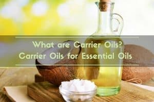 What are carrier oils? Carrier oils for essential oils.