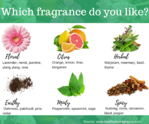 Best Home Fragrance Find The Best Fragrances For Your Home