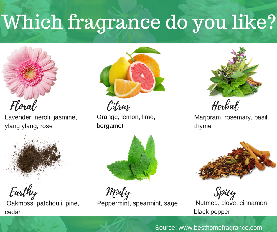 Best essential oil blends and fragrances